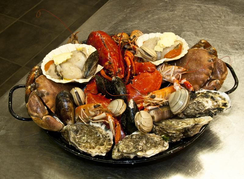 Private Guided Day Tour to Glencoe - Seafood Lunch
